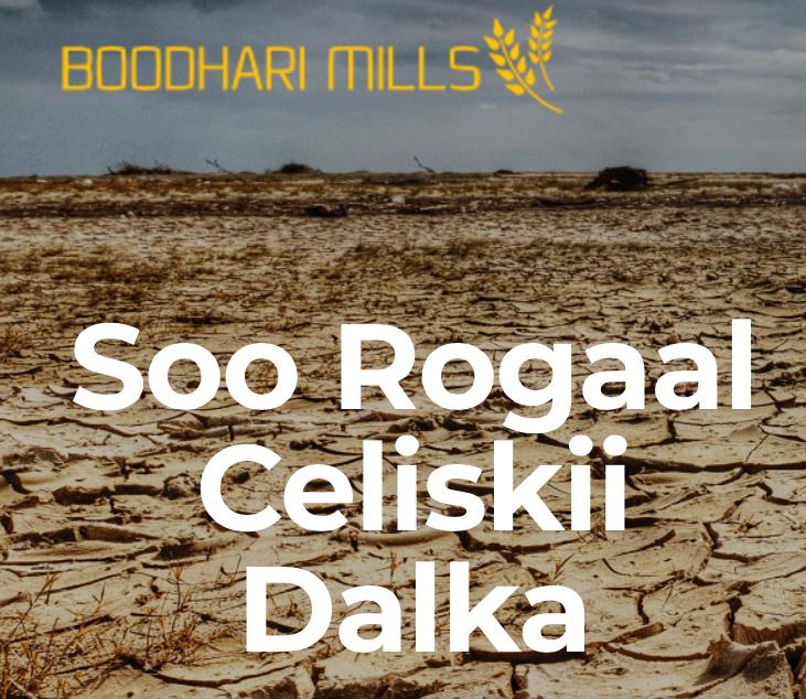 Boodhari Mills ..Warshada Daqiiqda