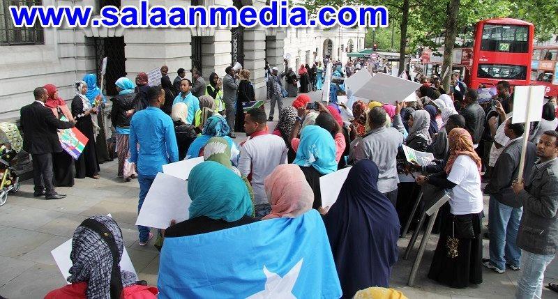 Salaan media_002